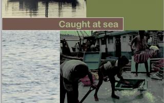 ILO - Caught at Sea